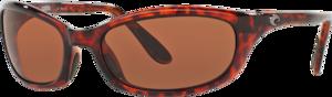 Tortoise - Copper